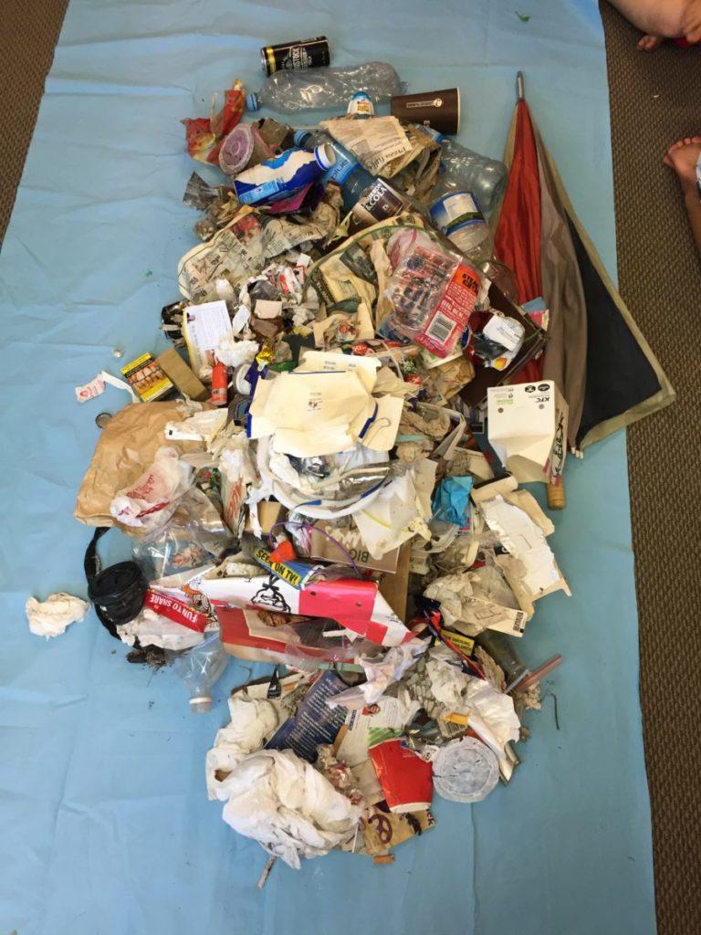 rubbish collected in te atatu