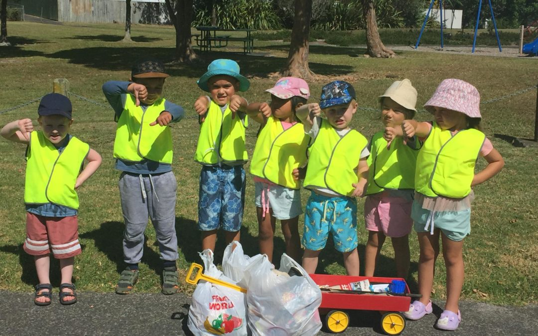 Sustainability in Early Childhood Education